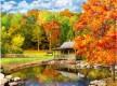 3d осінній листопад